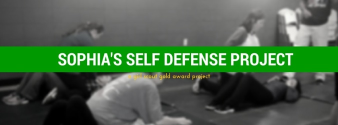 Sophia's self defense project